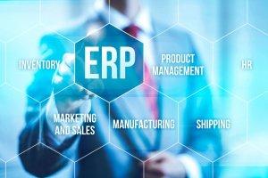 ERP-Unterteilung in Waben mit Bezeichnungen für Schnittstellen - Entwicklung